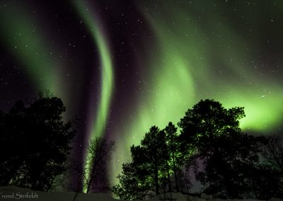 northern_lights_safari_alta_4